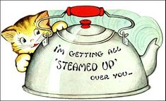 I'm Getting Steamed Up!