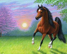 SPRING SUNRISE......the spring sun is rising as this bay stallion prances in the golden light