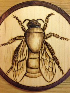 bee - pyrography on wood by Monica Moody