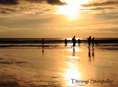 Golden sunset, on the beach at Piha, New Zealand