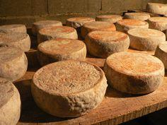 Brocciu (fromage de brebis corse) (4) Outre la charcuterie, d'excellents fromages sont produits sur l'île, dont le brocciu, superstar depuis l'obtention de son AOC en 1983, un fromage de brebis frais fondant à la texture évoquant la ricotta