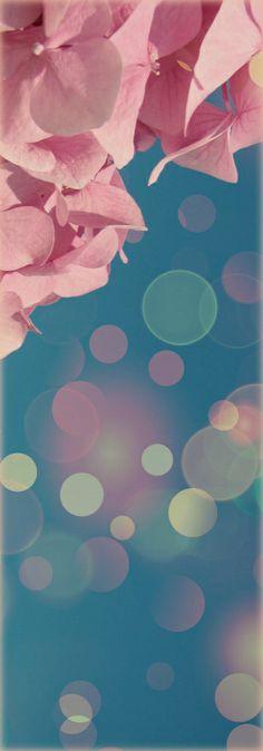~ pink & blue Bokeh ~