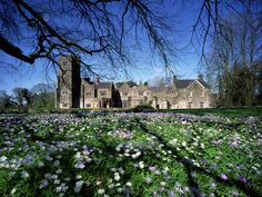 Belle Isle Estate in County Fermanagh, Ireland