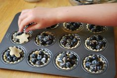 two parts sweet: Blueberry Picking and Our Recipe For Mini Blueberry Tarts