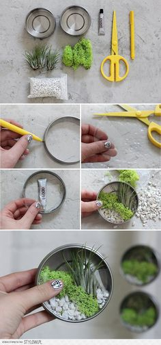 15 MIN DIY | Mini Air Plant Terrariums | I SPY DIY na Stylowi.pl
