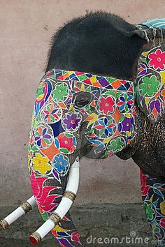 Decorated Indian Elephant by Jeremy Richards, via Dreamstime