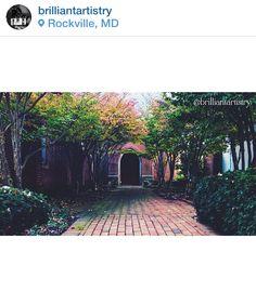 Hidden Pathway in Rockville