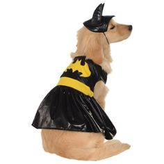 Your little crime-fighter can defeat the criminals of Gotham City in the officially licensed Batgirl Pet Costume by Rubie's! Lightweight and comfortable, this dress features Batgirl's logo and utility belt on the back and Velcro closures on the belly for an easy and secure fit. This outfit also includes a headpiece emulating Batgirl's intimidating cowl.Contains a dress and a headpiece.Sizing Information1. Measure the LengthMeasure your pet from base of the neck to base of the tail.2. Measure… Cat Dog Costume, Pet Costumes, Adult Costumes, Family Costumes, Batgirl Halloween Costume, Dog Halloween, Halloween Parties, Halloween Ideas, Batgirl Logo