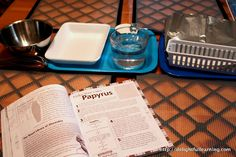 Make your own Papyrus + other great activities for ancient egypt unit including a mummification of apples science experiment  (delightfullearning.com)