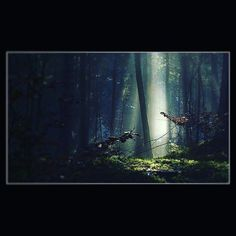 Die vielen Bäume und die wenigen Menschen - die machen den Wald so schön. #Wald #forest #baum #bäume #tree #licht #lights #mystisch #mystic #fotografie #nature #natur #kunst #art #aktex #xakten #spooky by richard8lee