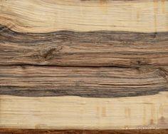 vlm world: Erdészeti textúrák 1.
