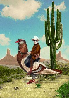 """Sammy Slabbinck: """"The Pigeon Ranger"""""""
