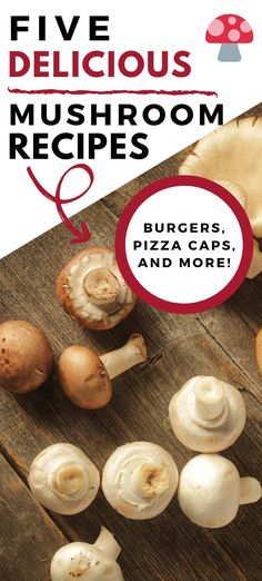 These five easy mushroom recipes are all crowd pleasers! From portabella pizza caps to mushroom burgers, find some delicious mushroom recipes everyone will love. Easy Mushroom Recipes, Best Mushroom Recipe, Mushrooms Recipes, Mushroom Appetizers, Quick Recipes, Healthy Dinner Recipes, Portabella Pizza, Mushroom Side Dishes, Chili Mac And Cheese