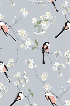 One of my new designs in collaboration with the RSPB, featuring pink birds on a grey background. Pink and grey bird wallpaper and fabric. Classic Wallpaper, Grey Wallpaper, Wallpaper Quotes, Grey And Coral, Coral Pink, Bird Wallpaper Bedroom, Coral Living Rooms, Home Interior Accessories, Artwork For Home