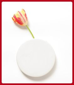 Chive Wall Dot White Vase - Fun stuff and gift ideas (*Amazon Partner-Link)