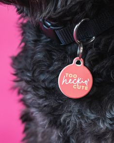 Too 👏 Heckin' 👏 Cute 👏 Pet Id Tags, Dog Tags, Pets, Animals And Pets