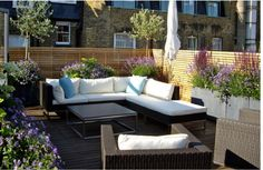 Loungebereich- Balkon oder Terrasse- Sichtschutz- Pflanzen eingerahmt