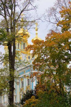 Catherine's Rococo Palace - South side autumn garden view of palace - Екатерининский дворец, Tsarskoye Selo (Pushkin), St. Petersburg, Russia. 2013