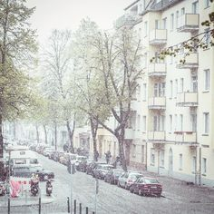 Die globale Erwärmung sorgt für nennen wir es mal ruhig Schnee. Nicht so wie Jon sondern mehr so wie Ramsay Bolton im April. Was?  #schneeimapril #berlin #fruehling #instadad #familienblog #papablog #daddyblogger #urban #igersberlin #ig_berlin #igersgermany