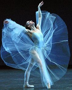 Google Image Result for http://urban-review.com/wp-content/uploads/2010/09/NYC-ballet-2.jpg