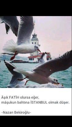 Aşık Fatih olursa eğer, Maşukun bahtına İstanbul olmak düşer Nazan Bekiroğlu