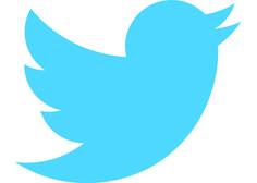 pajaro de twitter - Buscar con Google