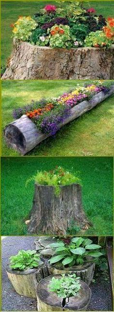 Ideas for planters which I could do with my son