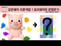 [희꽁연구소] 돼지도 분홍색은 지겹다!! 돼지의 색을 바꿔보았다 - YouTube