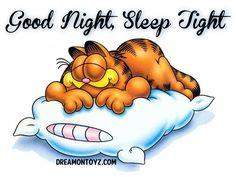 Good Night, Sleep Tight MORE Cartoon Graphics & Greetings http://cartoongraphics.blogspot.com/ And on Facebook https://www.facebook.com/dreamontoyz  Garfield the Cat sleeping on a pillow