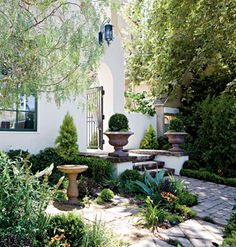 A balance of formal structures and lush foliage make this Mediterranean-style cottage garden unique.