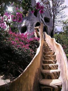 Amazing Treehouse & Wooden Staircase