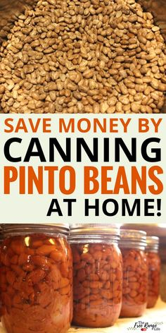 How to Pressure Can Dry Beans Step-By-Step - Food Preservation: Save money by pressure canning your own pinto beans at home for pennies~ - Pressure Canning Recipes, Home Canning Recipes, Pressure Cooking, Canning Beans, Canning Tips, Canning Soup, Canning Peppers, Diy Tumblr, Canning Food Preservation