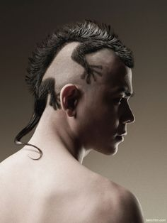 There's something in your hair. Amazing-haircut-bench-fix-hairstyling-gecko