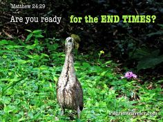 """Malaysia.  Matthew 24:29 """"Are you ready for the end times?""""   Scripture photo"""