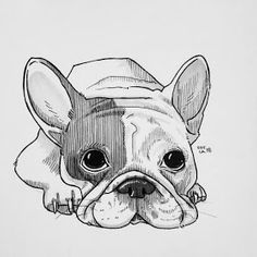 I Challenged Myself To Draw 30 Dogs In 30 Days is part of Animal drawings sketches - Hello, I'm a Finnish artist Sofia Härö I've always had a love for dogs as well as art When I decided to combine these two, the result was art challenge Cute Animal Drawings, Animal Sketches, Pencil Art Drawings, Art Drawings Sketches, Easy Drawings, Drawing Animals, Cute Animals To Draw, Cute Dog Drawing, Realistic Drawings