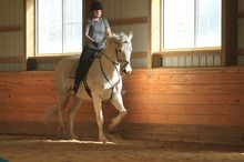 Overcoming Fear When Working with Your Horse - terrific article!