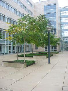 Vi har fremstillet de udendørsfliser i stort format, der ligger ved Københavns Universitet. Klik og se flere eksempler på fliser fra offentlige og private projekter over hele Danmark. Aarhus, Sidewalk, Plants, Side Walkway, Walkway, Plant, Walkways, Planets, Pavement