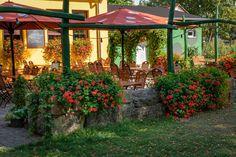 Biergarten der Parkgaststätte Laucha Park, Gazebo, Outdoor Structures, Beer Garden, Playground, Kiosk, Parks