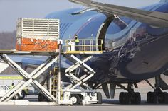 A Boeing 747 cargo plane arrived at Eppley Airfield at 4:11 p.m. on Friday, delivering six elephants that have now been taken to the Henry Doorly Zoo & Aquarium. The elephants arrived from Wichita after a 36-hour journey that began in Swaziland, and included stops in Senegal and Fort Worth, Texas.
