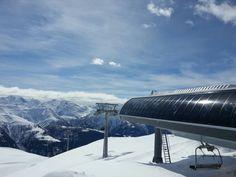 Golden Rabbit Bellwald Swiss Ski, The Mont, Rocky Mountains, Alps, Switzerland, Skiing, Rabbit, Italy, Sport