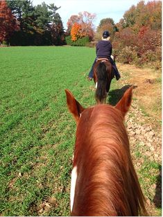 Why is horseback riding considered exercise?