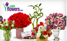 1800flowers free shipping 2015