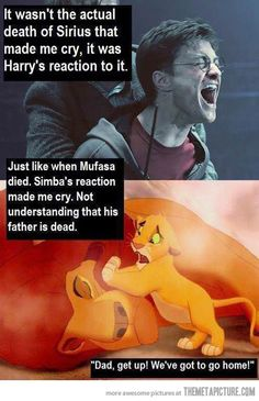 Two of the most traumatic deaths of my life  :'( along with Fred and Dobby!