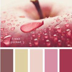 Design Seeds {edible color} | Book Preview