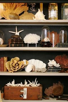 ciao! newport beach: beachy vibe/shells and weathered elements against sooty gray. This is the kind of setup I have been looking for! Would go great with all of our shells & lanterns. Beautiful!