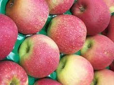 pink fruit - Google Search