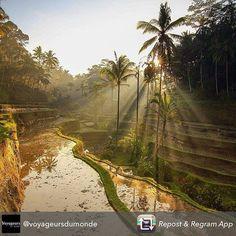 Comparateur de voyages http://www.hotels-live.com : L'envoûtement de l'Île des Dieux Un paysage à couper le souffle ! #voyageursdumonde #Indonesie #Bali #Upgrade #voyageprive #voyage #discover #seetheworld #sun #dream #nofilter #holiday #paradise #beautiful #nature #evasion #instagram #instatravel #vacation #vacances #travel #traveling Hotels-live.com via https://www.instagram.com/p/BB9yv3vBMnk/ #Flickr via Hotels-live.com…