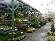 """PLANT CENTER DISPLAYS FOR RETAIL - like the """"end cap"""" displays"""