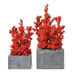 Decorative Red Coral