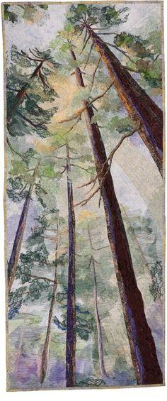 "Barbara Confer - ""Canopy"""